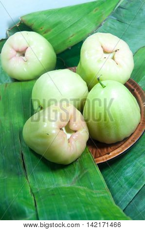rose apple or chomphu fresh fruit from thailand