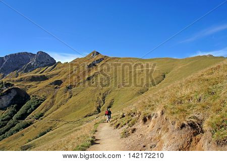 Hiking in the Allgaeu Alps in Tyrol, Austria,  sunny autumn day, peaks of the Tannheim Mountains, mountain meadows, a mountain trail and hikers,