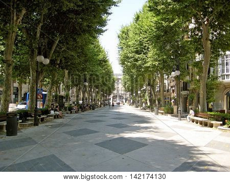 Boulevard Somewhere In Palma De Majorca