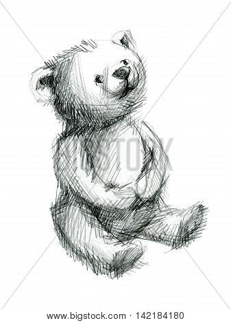 Pensive teddy bear. Hand drawing sketch on white background.