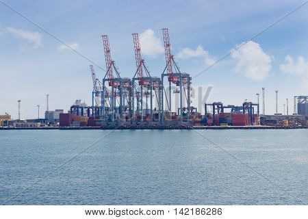 Container terminal of sea cargo port with several container crane on the berth