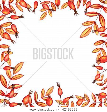background with autumn watercolor leaves and red berries , nature template, foral frame, hand drawn design elements