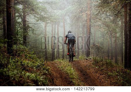 male athlete mountainbiker rides a bicycle along a forest trail. in forest mist mysterious view