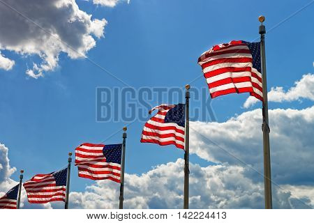 Flags Of The United States Of America In Washington Dc