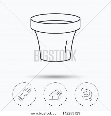 Leaf, scissors and pot icons. Hothouse linear sign. Linear icons in circle buttons. Flat web symbols. Vector