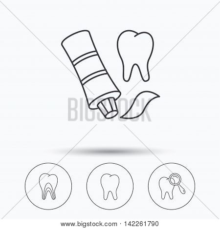 Tooth, dental diagnostics and toothpaste icons. Dentinal tubules linear sign. Linear icons in circle buttons. Flat web symbols. Vector