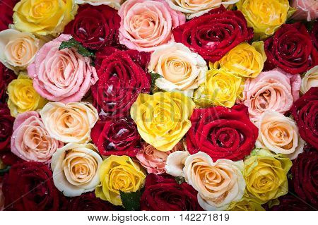 Bouquet Of Roses With Dew Drops