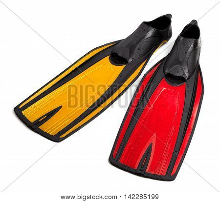 Swim fins of different colors with water drops. Isolated on white background.
