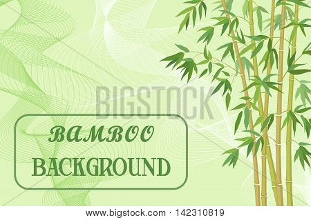 Bamboo Stems with Green Leaves on Background with Abstract Pattern. Vector