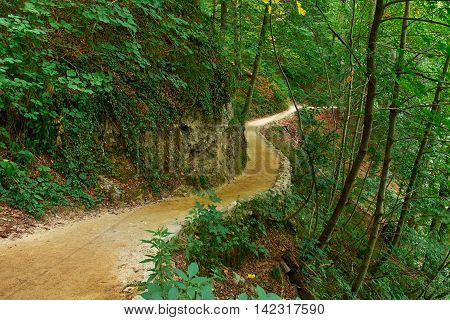 Forest Road Trail in Plitvice National Park Croatia with Water Stream