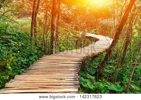 Wooden Road Trail in Plitvice National Park Croatia with Sun Rays