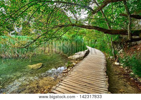 Wooden Road Trail near the Lake in Plitvice National Park Croatia