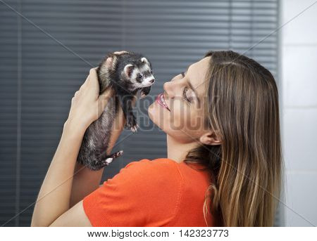 Happy Woman Playing With Weasel In Veterinary