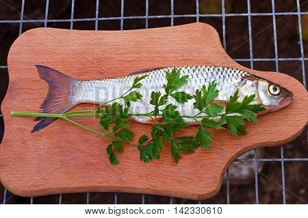 chub and parsley on a cutting board
