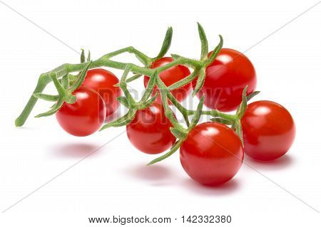 Currant Sweet Pea Tomatoes, Paths