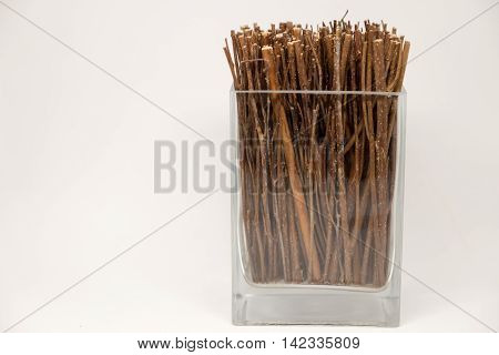 Dried twigs fre decoration in the glass bottle.