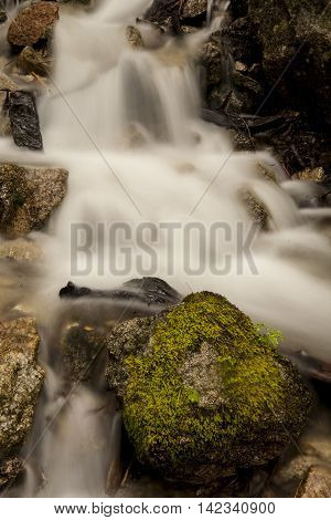Cascading stream flowing over moss covered rocks