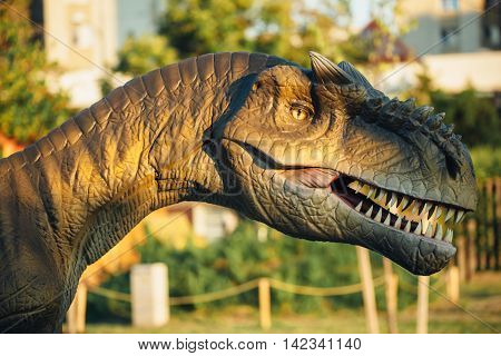 NOVI SAD SERBIA - AUGUST 5 2016: Allosaurus life size model of prehistoric animal in theme entertainment Dino Park. This large theropod dinosaur lived 155 to 150 million years ago.