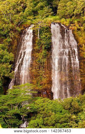 Opaeka'a Falls On Kauai Island Of Hawaii