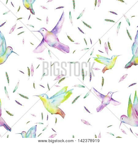 Seamless pattern of colored colibri and feathers painted with watercolors on a white background