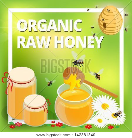 Organic raw honey concept. Honeycomb, honey ladle, honey bee, honey dipper, flowers, honey wax. Healthy food production
