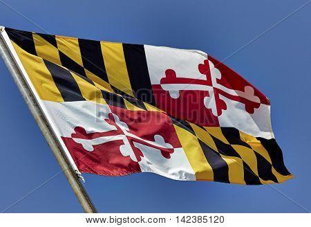 Maryland State Flag
