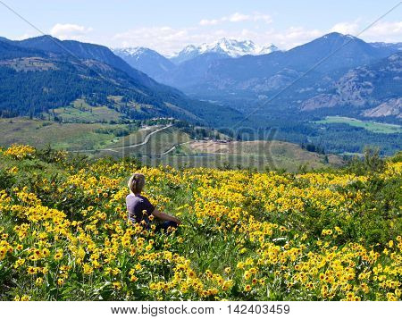 Woman sitting in wildflowers. Alpine meadows filled with sun flowers and mountain view. Patterson mountain near Winthrop Washington USA. North Cascades National Park.