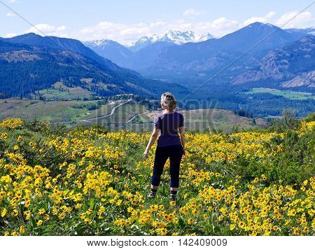 Slim Blond Woman Standing among Yellow Flower. Patterson Mountain near Winthrop WA USA. North Cascades National Park.
