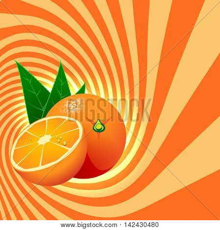 Striped spiral orange confectioners background. Orange fruit with water drops. Orange spiral tunnel. Fruit spiral for cover design of food with orange flavour. Vector Illustration.