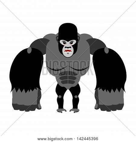 Angry Gorilla On Its Hind Legs. Aggressive Monkey On White Background. Wild Wrathful Animal. Large F