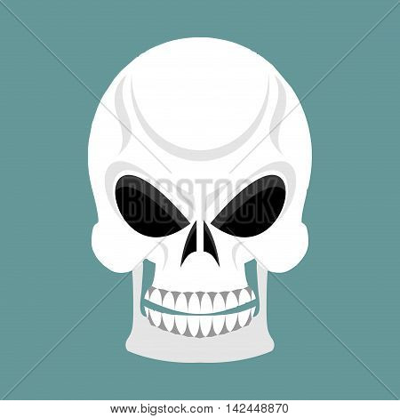 Skull With Grin. Skeleton Head Isolated. Cranium In Green Background