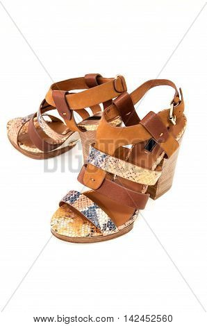 Pair of womens open-toe sandals decorated snake leather on white.