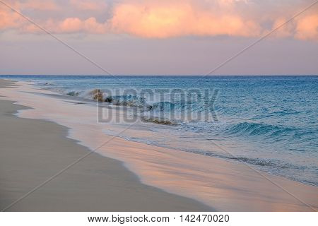 Sea with waves in the light of the sunset.