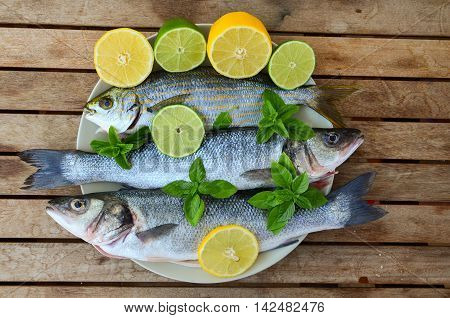 Fresh seabass and salema porgy with lemon lime basil and spearmint in white porcelain plate on old wooden table top view