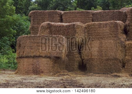 Rectangular shaped hay bails stacked upon each other