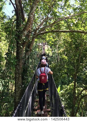 CHIANG RAI THAILAND - AUGUST 9 : vertical photo of unidentified people walking on canopy bridge on August 9 2016 in Chiang rai Thailand. This is a newest travel attraction in Chiang Rai