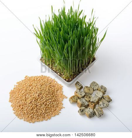 wheat grasswhole wheat bread and wheat grains on white background