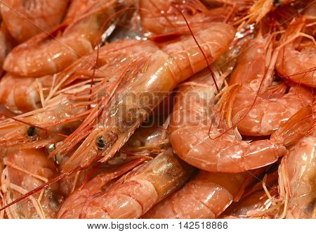 Fresh shrimp or prawns on a market stall. Fresh, cooked seafood, full frame shot.