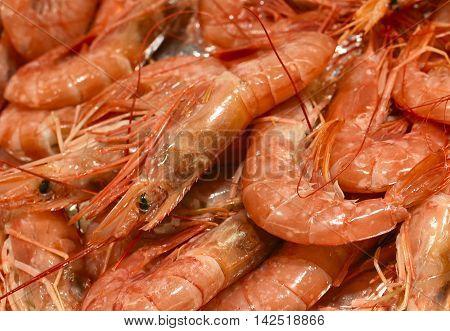 Fresh shrimp or prawns on a market stall. Fresh, cooked seafood, full frame shot.