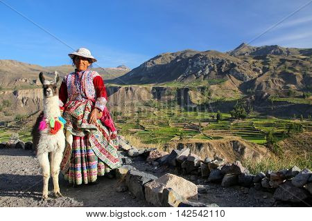 Colca Canyon, Peru-january 16: Unidentified Woman In Traditional Dress Stands With Llama On January