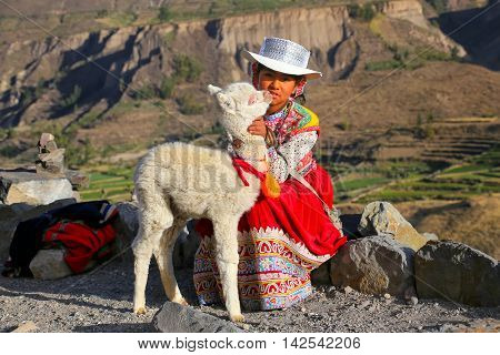 Colca Canyon, Peru-january 16: Unidentified Girl In Traditional Dress Sits With Llama On January 16,