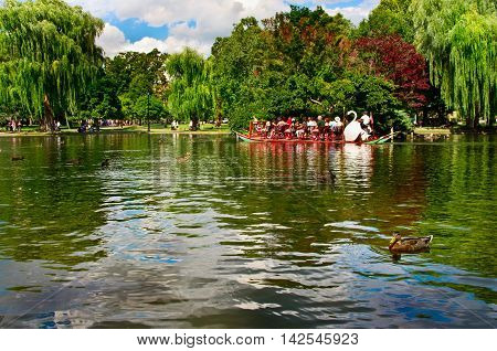 Boston USA - Aug 7 2016: Locals and tourists riding on the famous swan boats at the Boston Public Garden in Boston Massachusetts USA