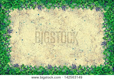 Square Grass Frame With Copy-space On Sand Background