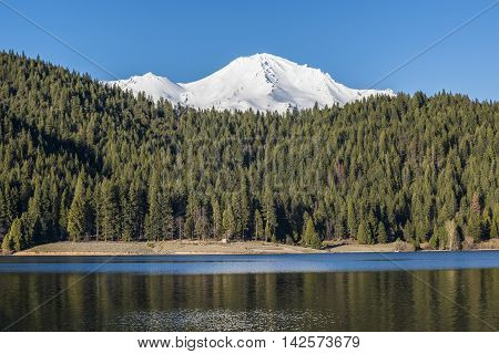 View of snowcapped Mount Shasta peaks with Alpine Forest on mountain by Siskiyou lake