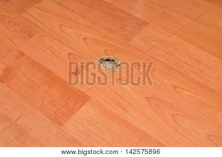 Damaged laminate light brown floor with hole in it