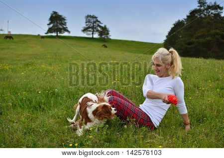 Playful Dog And Woman In Meadow