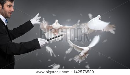 magician performs the trick with white a pigeon