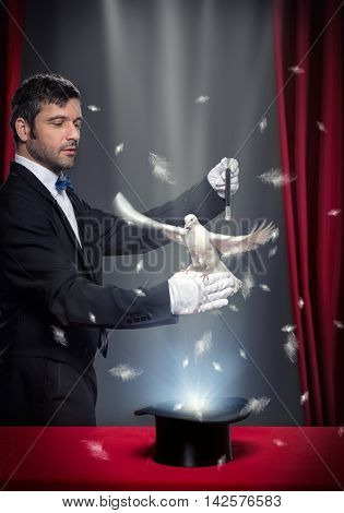 magician performing magic trick with pigeon on theatrical stage