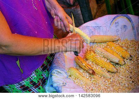 Asuncion, Paraguay - December 26: Unidintified Woman Cuts Corn At Mercado Cuatro On December 26, 201