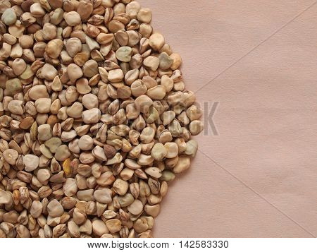 Grass pea (Lathyrus sativus) aka sweet pea chickling pea Indian pea white pea cicerchia pea vegetables vegetarian food with copy space